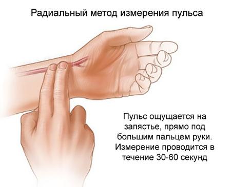 метод измерения пульса