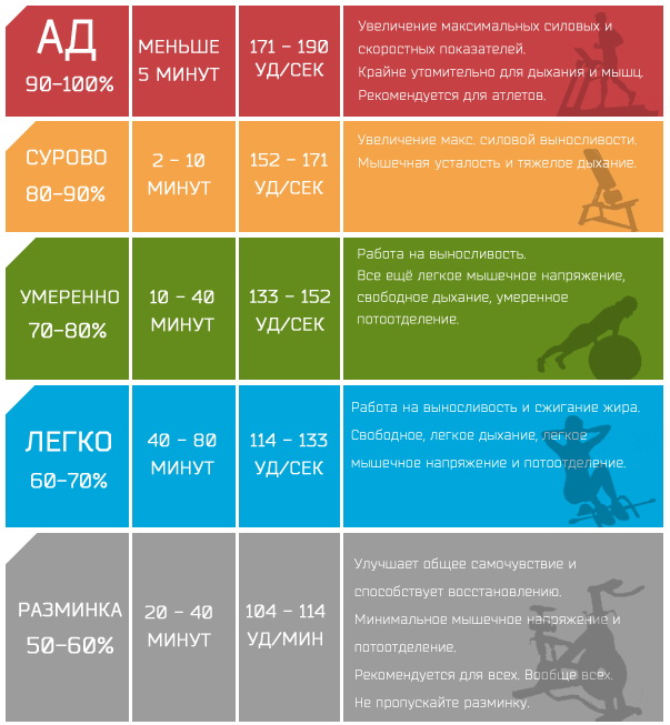 пульсовые зоны и тренировки