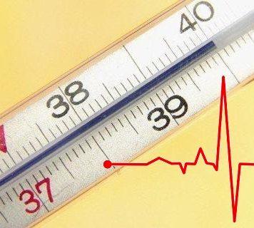 пульс при температуре